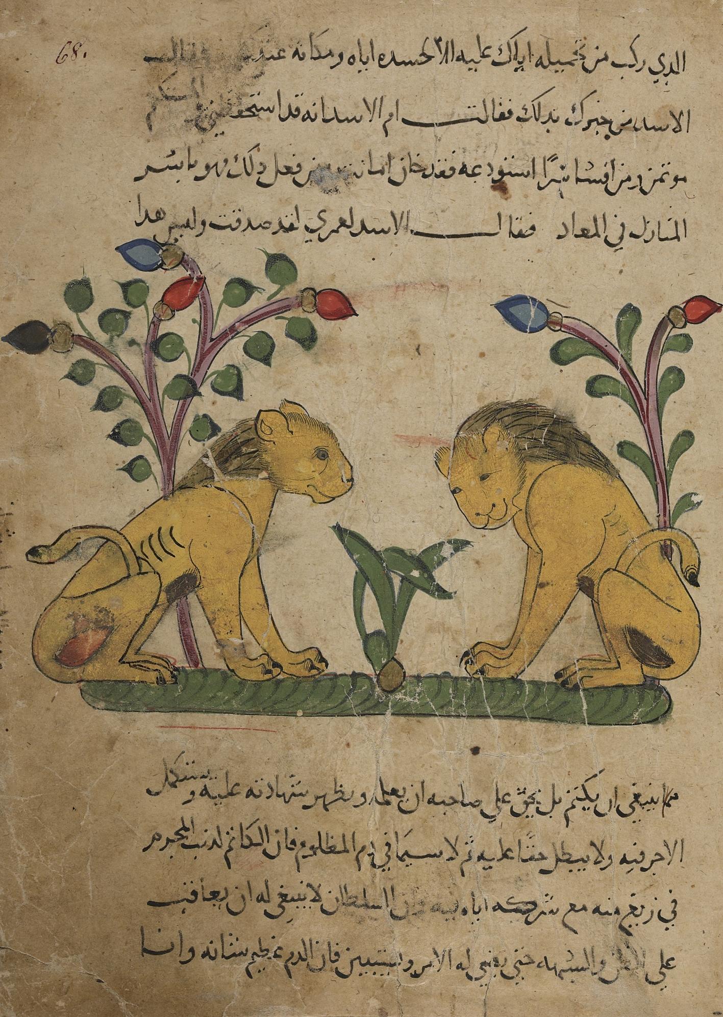 """Miniatura dal codice """"Il miracolo della creazione"""" di al-Kazwini (Iraq, 1280)."""