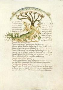 Un foglio della Sumula Estense di Gioacchino da Fiore.