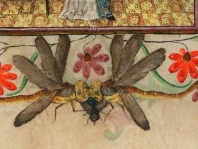 Due libellule per una mosca