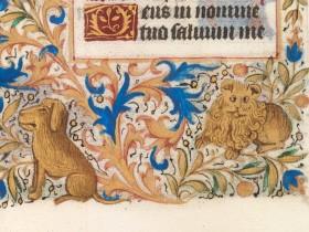 Cane e leone