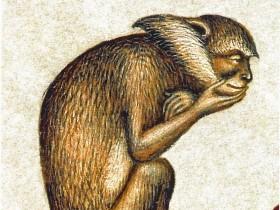 12 Scimmia pensosa
