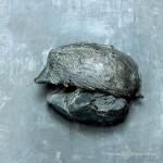 Giacomo Manzù, porta della Morte,  particolare con riccio