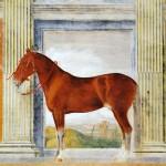 Il cavallo Bataglia - Sala dei Cavalli