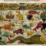 Meraviglie del mare e animali strani (1544)