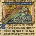 Zilfius (XV secolo)