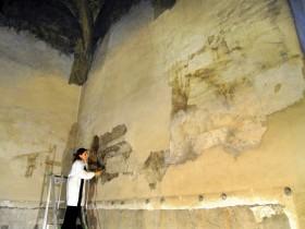 Sala delle Asse - il restauro