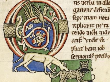 Cane che morde gatto che ha catturato due topi