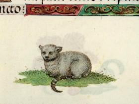 Libro d'Ore (XVI secolo), BM, Rouen