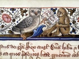 Gufo e scimmia cantano insieme