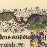 CATURDAY FOLIA: BECCATO!