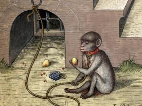 Prenderò la mela