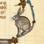 Albertus Magnus, De animalibus (XIV secolo), BnF