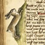 Buch der natur, » par Conrad de Megenberg (XV secolo), BnF
