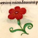 02 Libro d'Ore di Giovanna di Castiglia (Fiandre, 1486-1506), British Library, Londra