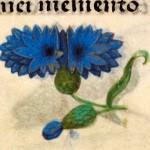 03 Libro d'Ore di Giovanna di Castiglia' (Fiandre, 1486-1506), British Library, Londra.