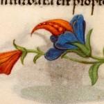 07 Libro d'Ore di Giovanna di Castiglia (Fiandre, 1486-1506), British Library, Londra