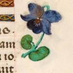 10 Libro d'Ore di Giovanna di Castiglia (Fiandre, 1486-1506), British Library, Londra
