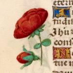 12 Libro d'Ore di Giovanna di Castiglia (Fiandre, 1486-1506), British Library, Londra