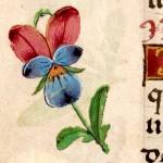 Libro d'Ore di Giovanna di Castiglia (Fiandre, 1486-1506), British Library, Londra