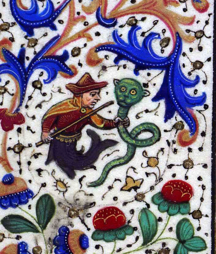 Grottesca, mostro, codice miniato
