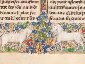 capricorn-unicorn